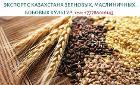 Экспорт зерновых, масличных, бобовых крупным оптом