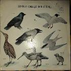 Пластинки с голосами разных птиц-2шт