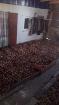 картошка, Костюковичи в Беларуси