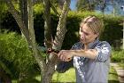 Садовник обрезка обработка плодового сада